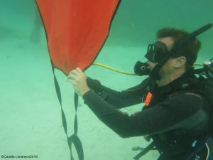 PADI Divemaster course on Malapascua at Thresher Cove
