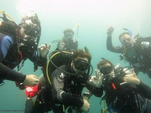 Divemaster internships on Malapascua at Thresher Cove