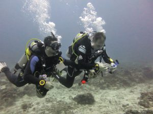 PADI Self Reliant diver course at Thresher Cove Resort
