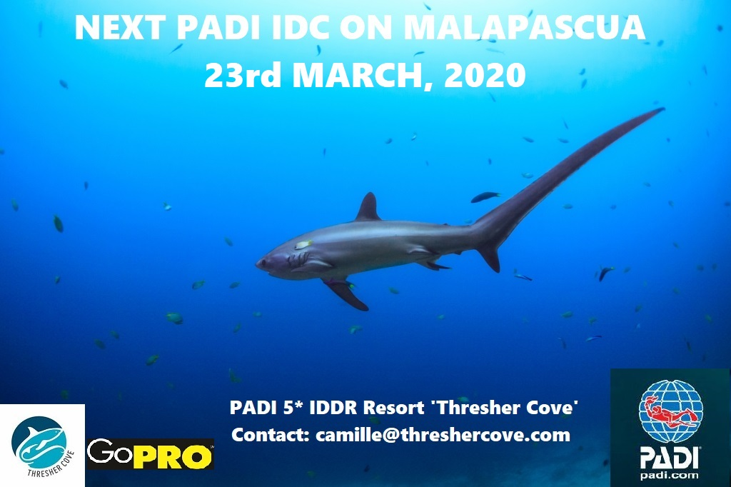 Next PADI IDC starts 23rd March 2020 on Malapascua